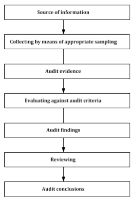 Informed option trading activities and audit